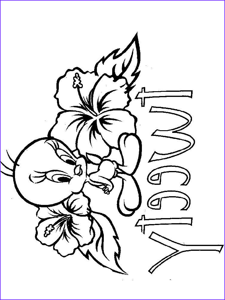 cute tweety bird coloring pages