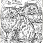 Cat Coloring Books Best Of Image Adult Coloring Page Cat