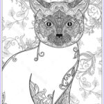 Cat Coloring Books Best Of Photos 627 Best Images About Adult Colouring Cats Dogs