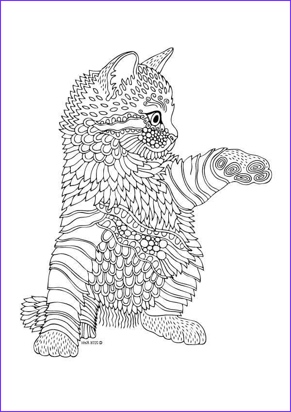 adult colouring cats dogs zentangles