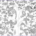 Cat Coloring Books Luxury Stock A Million Cats Fabulous Felines To Colour Free Pattern