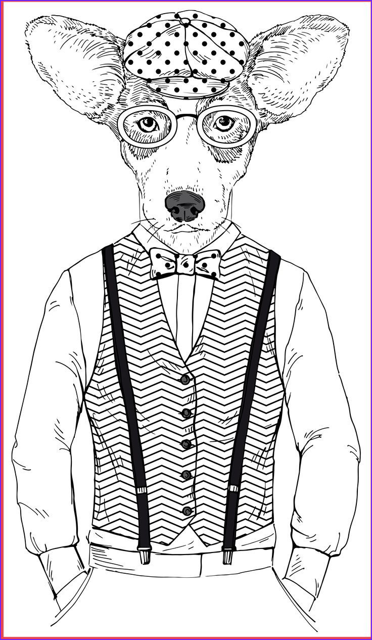 Cat Coloring Books New Images Cat Coloring Book for Adults Google Search
