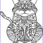 Cat Coloring Books New Photography Sitting Cat Zentangle Coloring Page