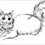 Cat Coloring Books New Photos Free Printable Cat Coloring Pages For Kids