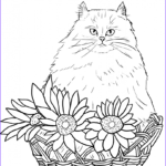 Cat Coloring Books Unique Photos Cats And Flowers Coloring Book
