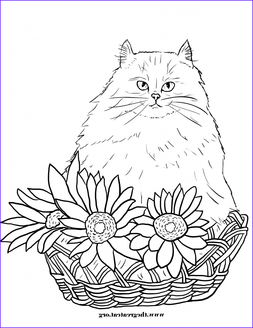 cats flowers coloring book