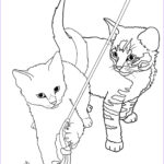 Cat Coloring Pages Best Of Images Cat Coloring Pages