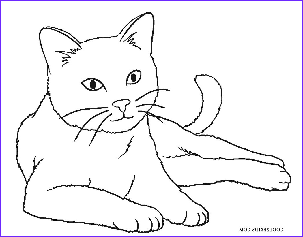 Cat Coloring Pictures Beautiful Photography Free Printable Cat Coloring Pages for Kids