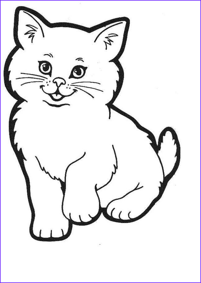 Cat Coloring Pictures Best Of Gallery Pictures Of Cats to Colour Doodle and Drawing Time