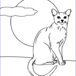 Cat Coloring Pictures Inspirational Gallery Free Printable Cat Coloring Pages For Kids