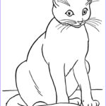 Cat Coloring Pictures Inspirational Photos Realistic Coloring Pages Cats