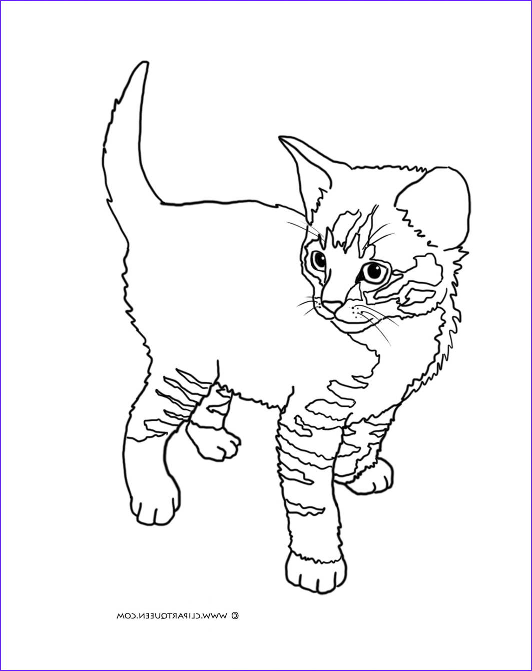 Cat Coloring Pictures Luxury Collection Cat Coloring Pages