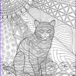 Cats Adult Coloring Books Awesome Gallery Coloring Page Printable Tabby Cat Zendoodle By