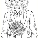 Cats Adult Coloring Books Cool Photography 17 Best Images About Color Pages Cats On Pinterest