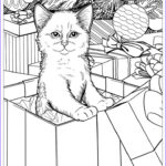 Cats Adult Coloring Books Inspirational Photos 1000 Afbeeldingen Over Stress Relief Coloring Pages Op
