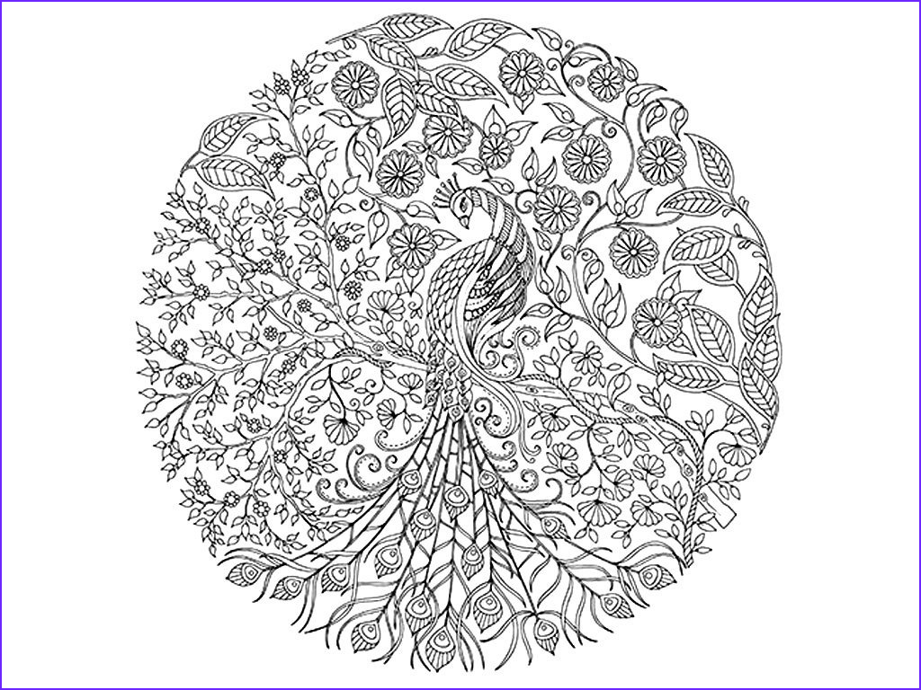 Challenging Coloring Pages for Adults New Photography Yandextoplamlar Mening Rasmlarim