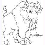 Children Coloring Books Beautiful Images Free Printable Bison Coloring Pages For Kids
