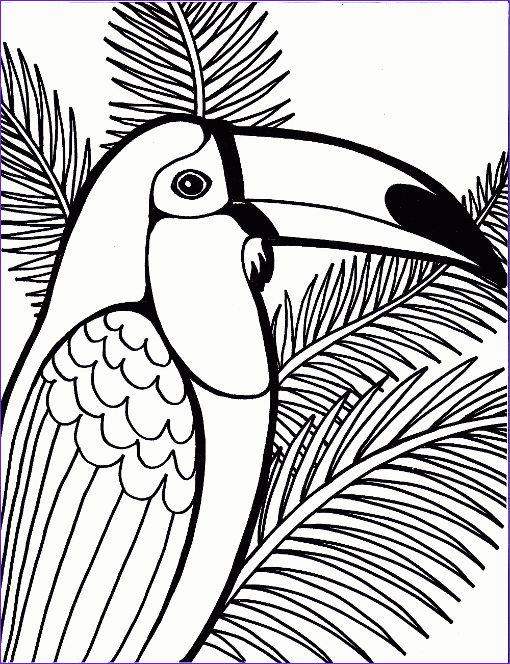 Childrens Coloring Book Elegant Photos Free Printable Parrot Coloring Pages for Kids