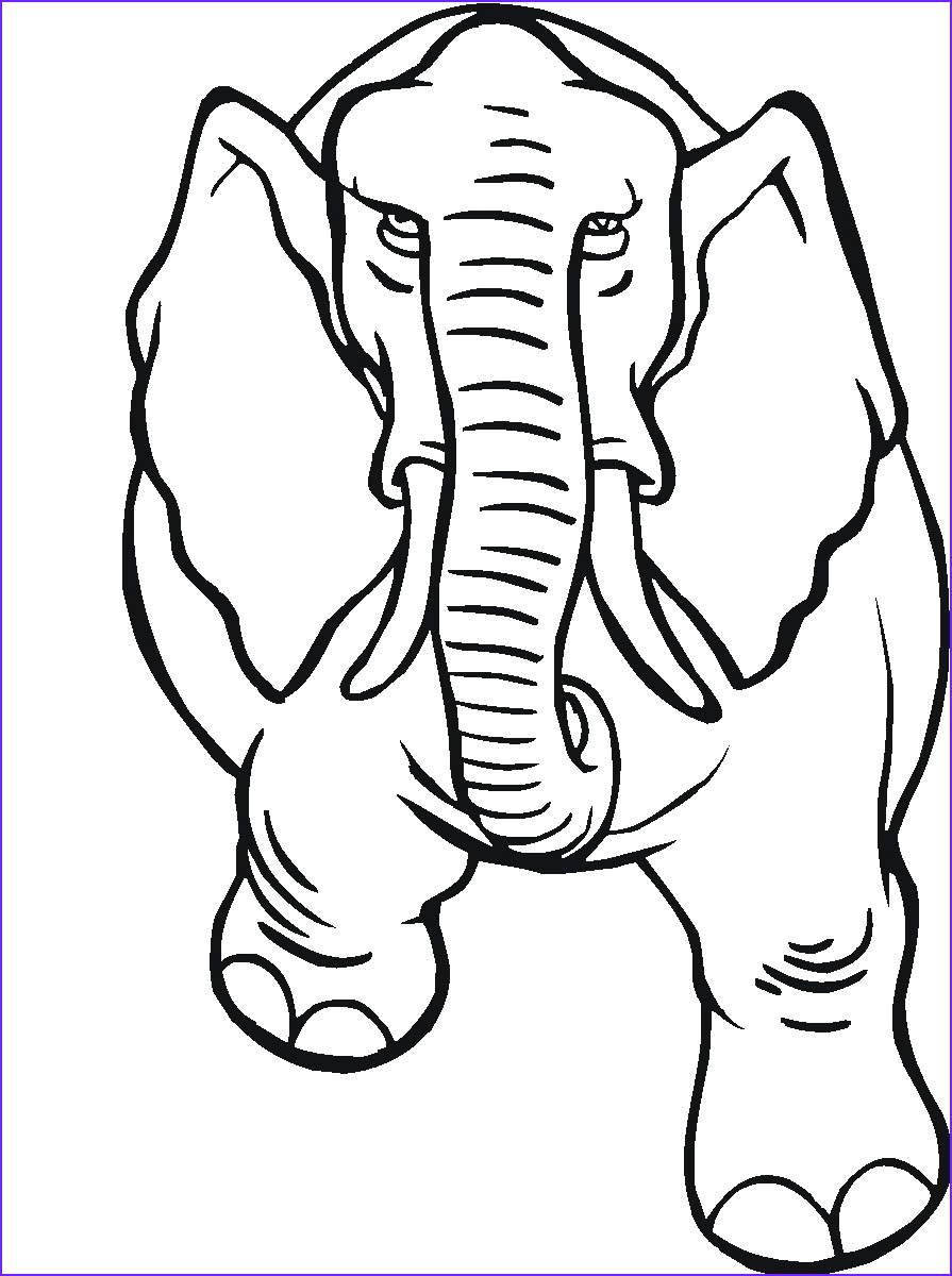 Childrens Printable Coloring Pages New Image Free Printable Elephant Coloring Pages for Kids