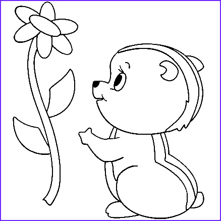 Chipmunk Coloring Pages New Images Cool Kidz 2013