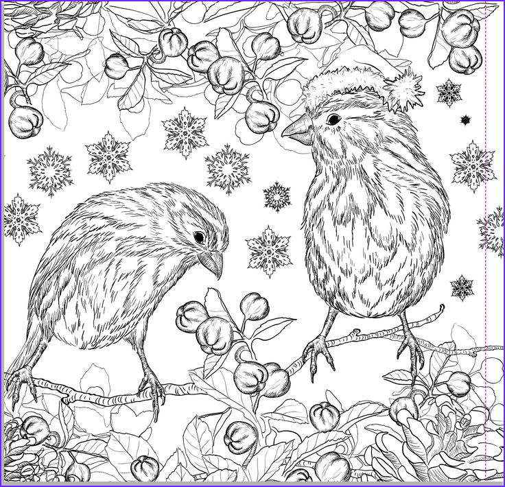 Christmas Adult Coloring Inspirational Images 194 Best Images About Winter Coloring On Pinterest