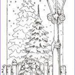 Christmas Tree Coloring Pages For Adults Unique Photography 1000 Images About Adult And Children S Coloring Pages On
