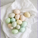 Color Eggs With Food Coloring Best Of Stock How To Dye Eggs With Food Coloring Tidbits