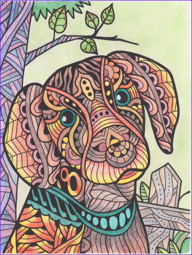 Color It Coloring Books Awesome Photos 1000 Images About Colorit Free Coloring Pages Submissions