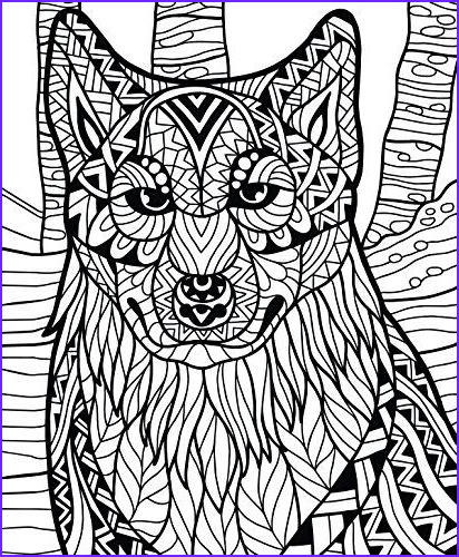 Color It Coloring Books Awesome Stock Colorit Wild Animals Coloring Book Premium Hardcover with