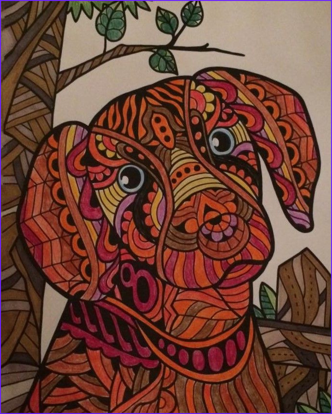 Color It Coloring Books Beautiful Photos 1000 Images About Colorit Free Coloring Pages Submissions