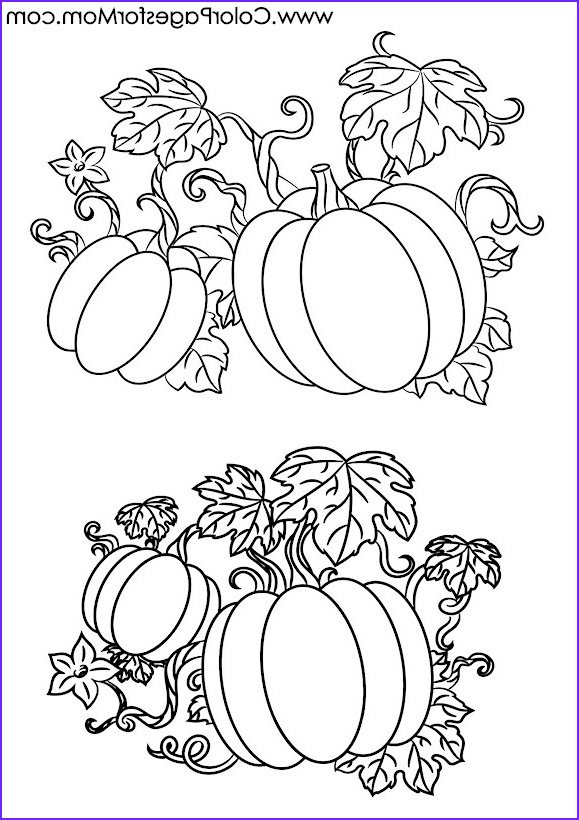 Coloring 4 Cool Collection Advanced Coloring Pages Halloween Pumpkins Coloring Page