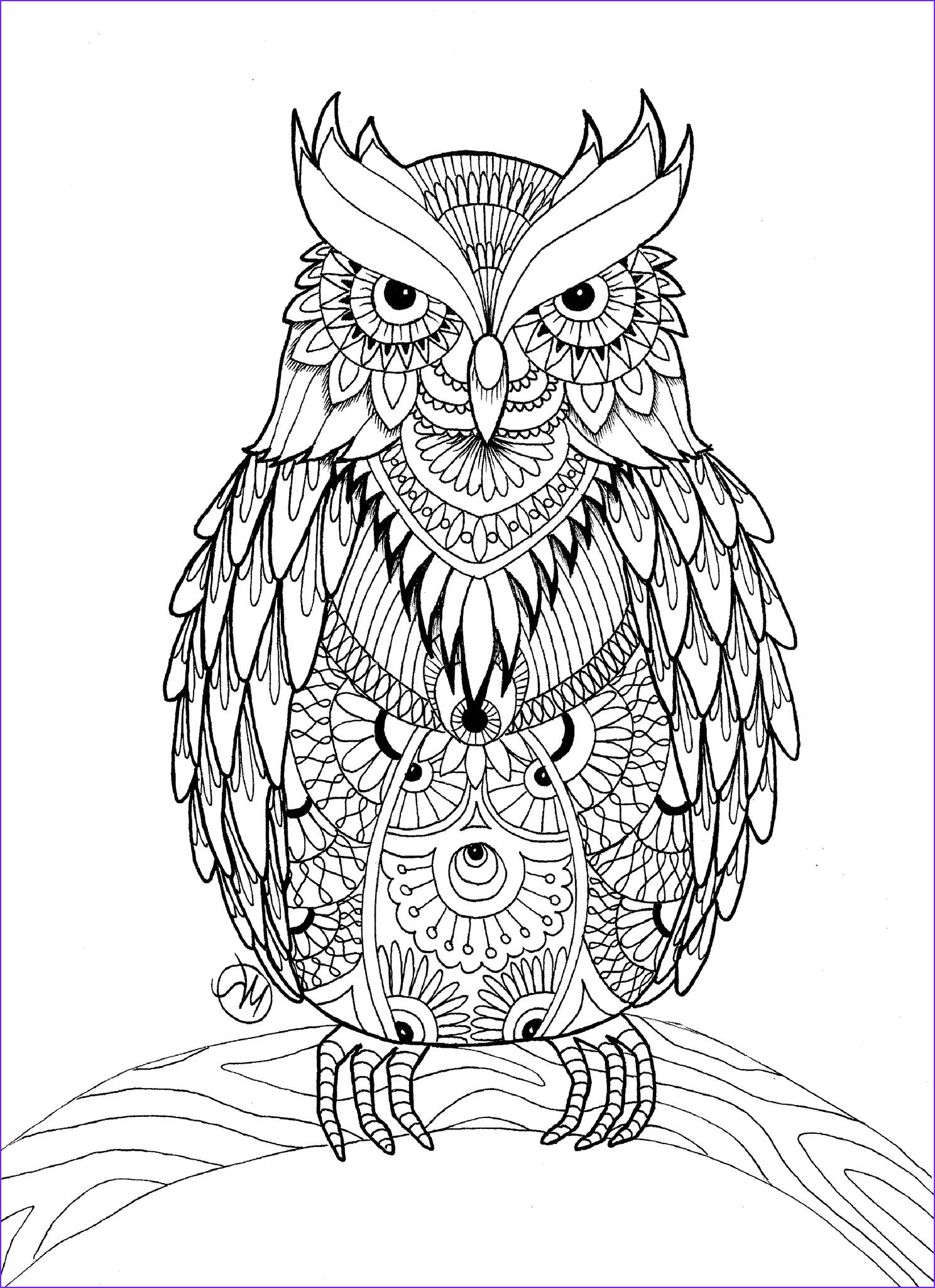 Coloring Adult Inspirational Stock Owl Coloring Pages for Adults Free Detailed Owl Coloring