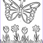 Coloring Book Butterfly Best Of Image Free Butterfly Coloring Page