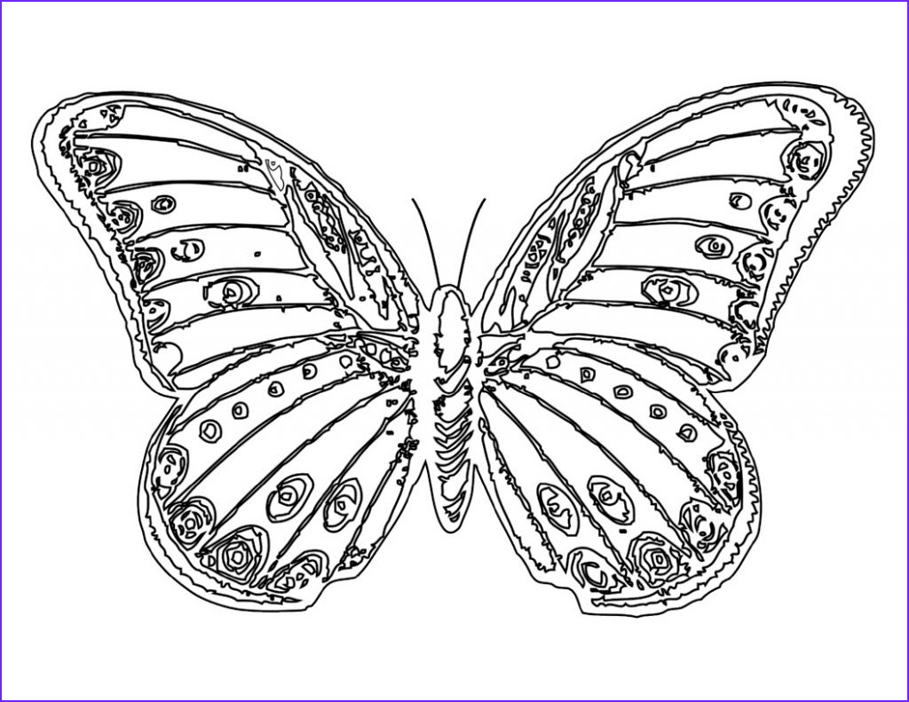 Coloring Book butterfly Cool Gallery Free Printable butterfly Coloring Pages for Kids