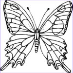 Coloring Book Butterfly Elegant Images Difficult Coloring Pages For Adults