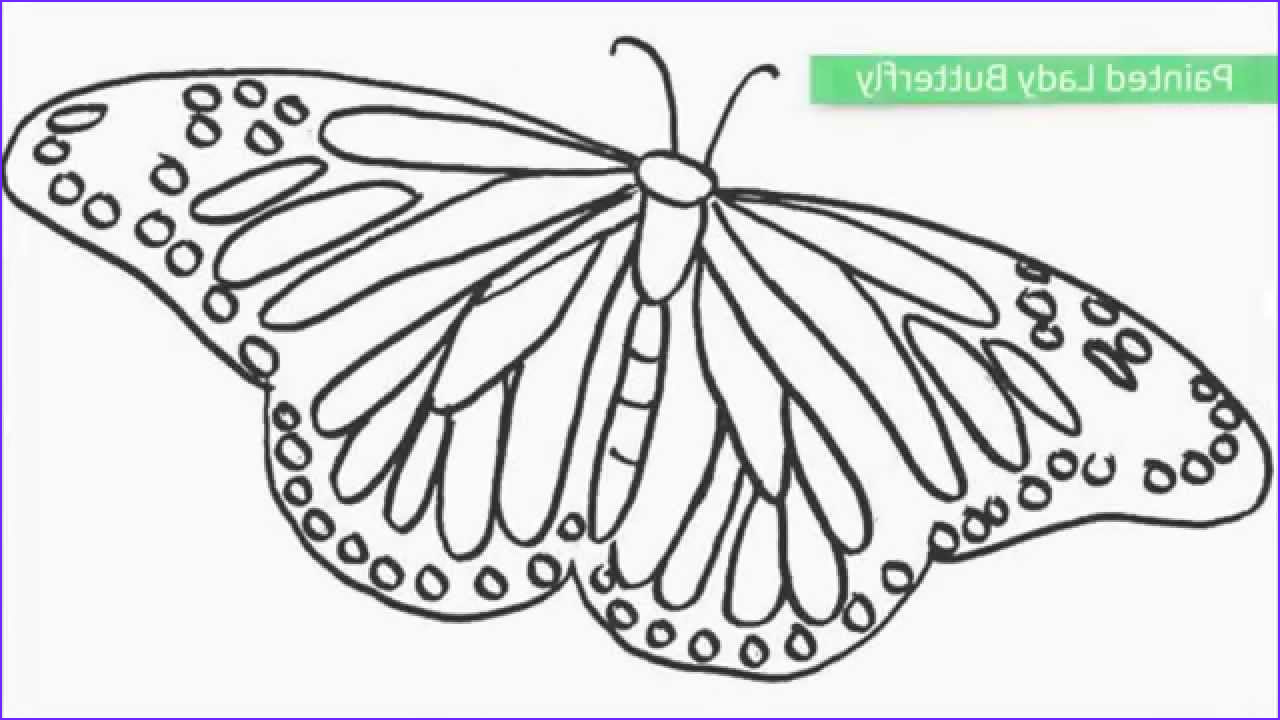 Coloring Book butterfly Inspirational Collection top 25 Free Printable butterfly Coloring Pages