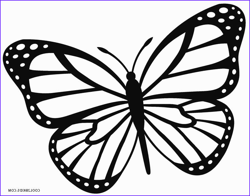 Coloring Book butterfly New Photos Printable butterfly Coloring Pages for Kids
