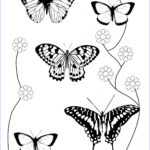 Coloring Book Butterfly Unique Collection Butterfly Coloring Pages