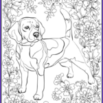 Coloring Book Dog Inspirational Photography De Stress With Dogs Downloadable 10 Page Coloring Book