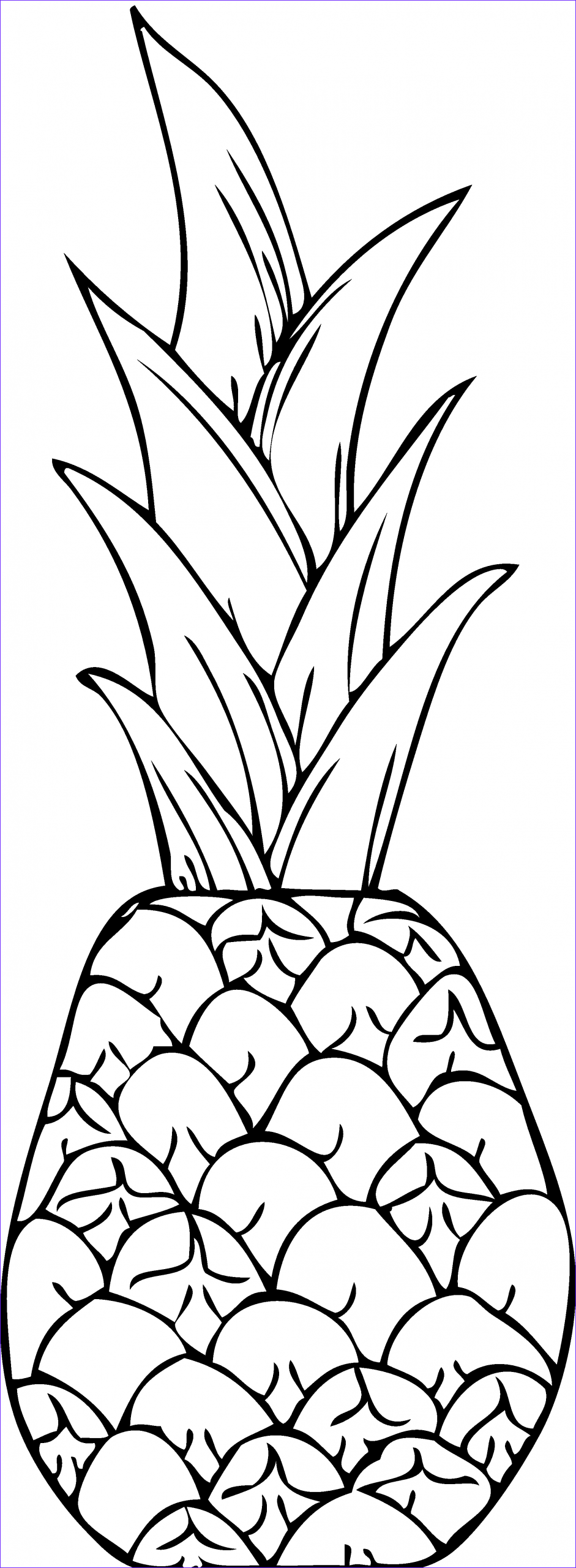 pineapple clipart image 5165