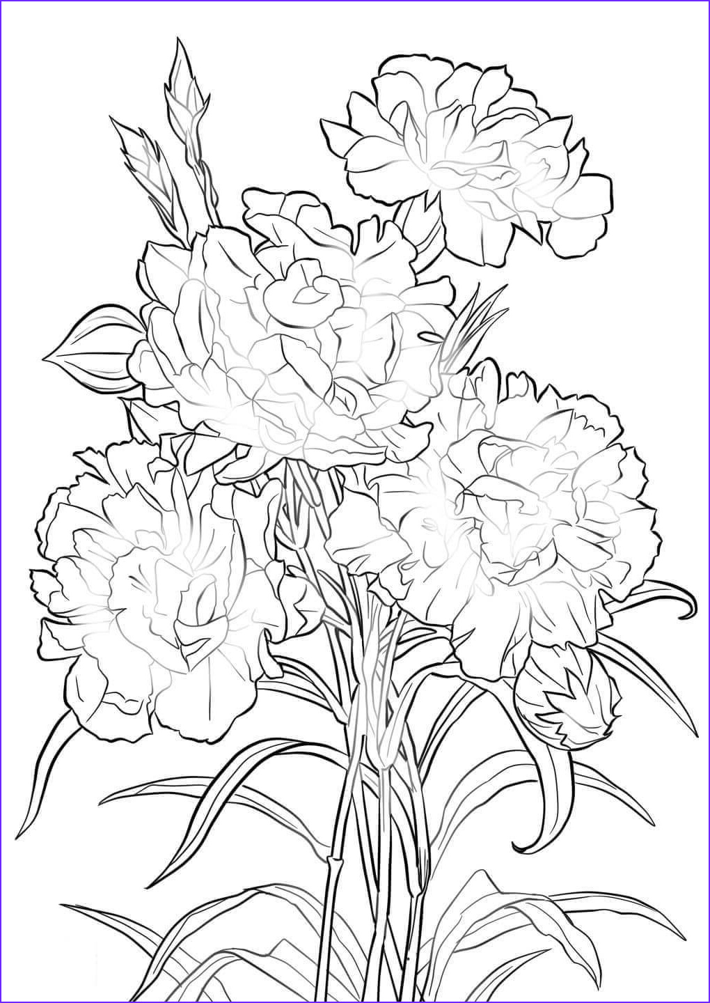 Coloring Book Flowers Luxury Photos Beautiful Printable Flowers Coloring Pages