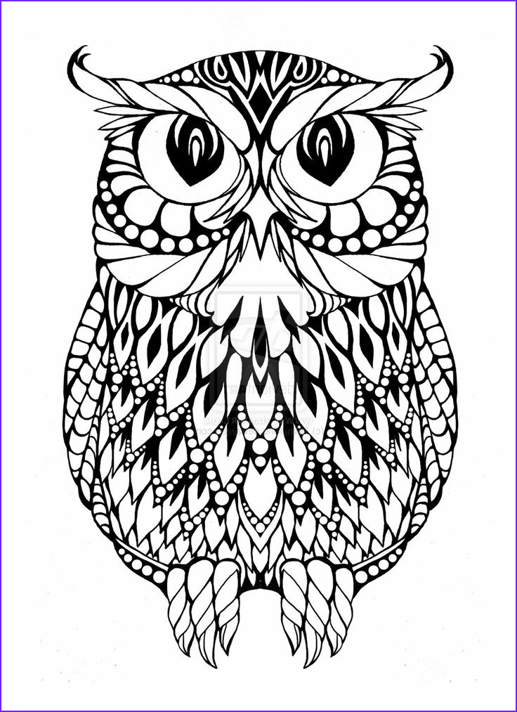 Coloring Book Owl Beautiful Image Owl Coloring Pages Coloring Pages & Imagixs