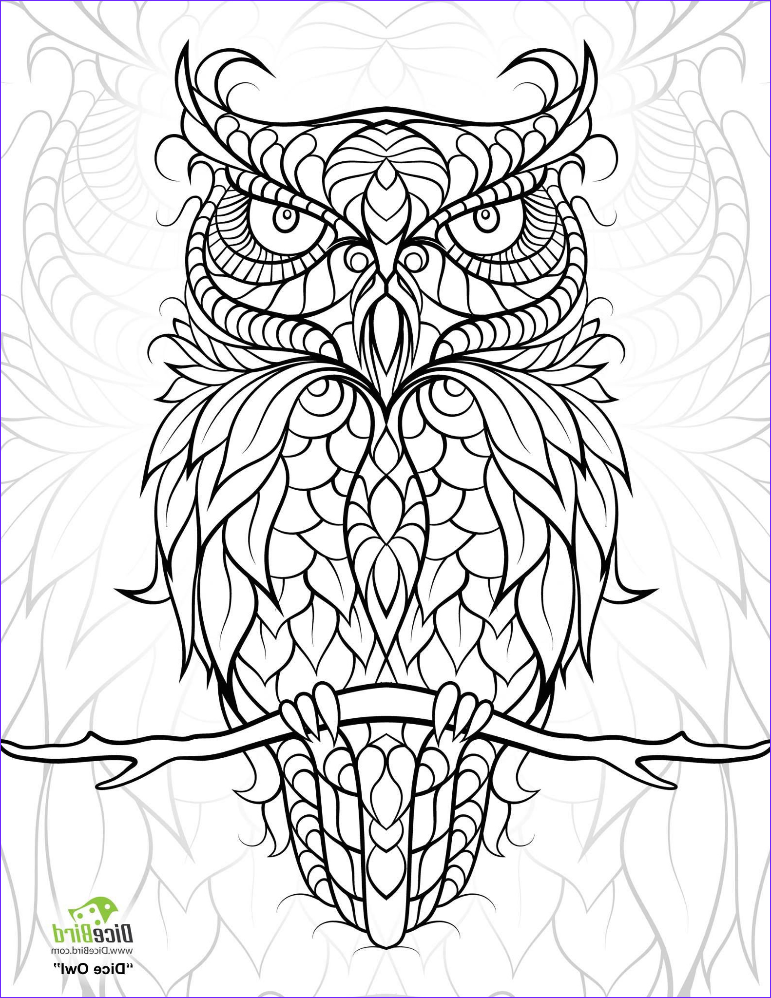 Coloring Book Owl Cool Gallery Diceowl Free Printable Adult Coloring Pages