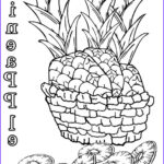 Coloring Book Pages For Kids New Image Printable Pineapple Coloring Pages For Kids