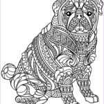 Coloring Book Pages For Teenagers Awesome Stock Dog Coloring Pages For Adults Best Coloring Pages For Kids