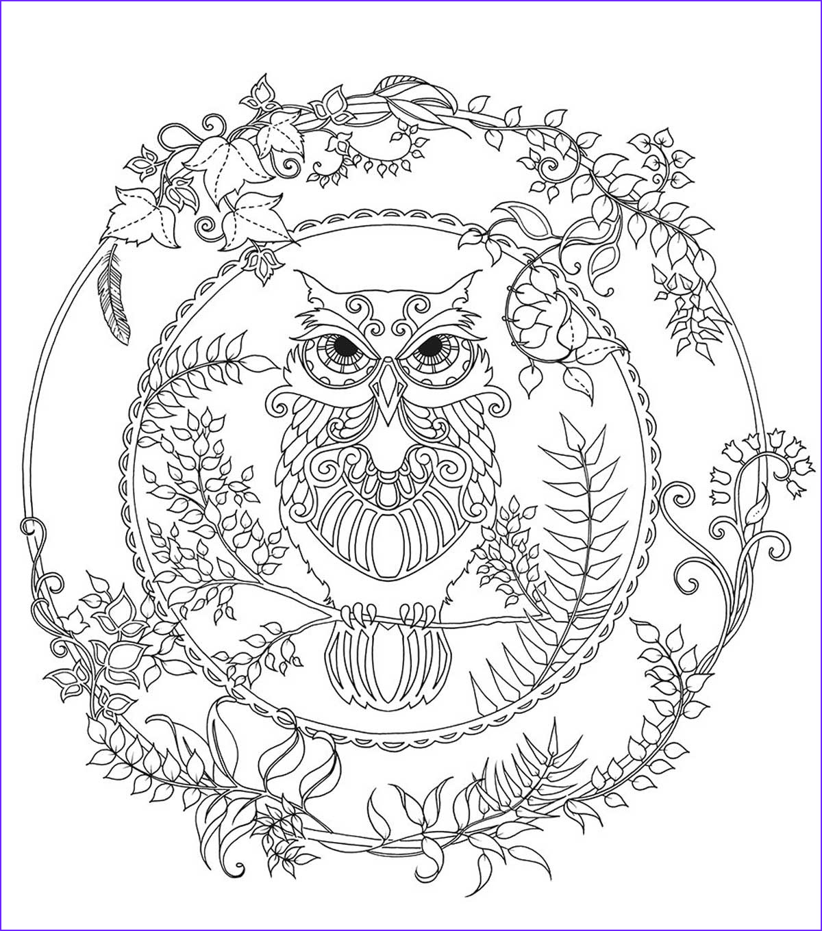 Coloring Book Pictures Beautiful Gallery Chronicle Books Enchanted forest Coloring Book Joann