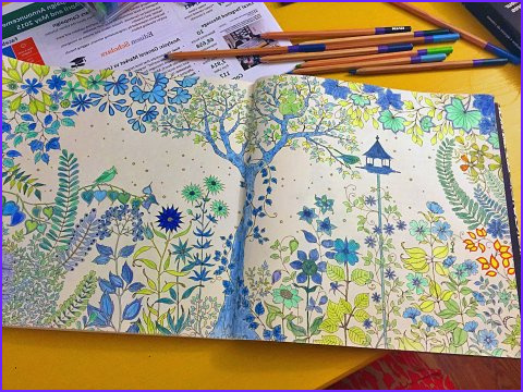best adult coloring books on 2015 12