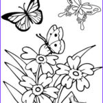 Coloring Butterflies Elegant Photos Printable Spring Coloring Pages