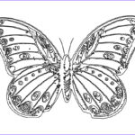 Coloring Butterflies Inspirational Photos Free Printable Butterfly Coloring Pages For Kids