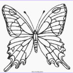 Coloring Butterflies Luxury Images Printable Butterfly Coloring Pages For Kids